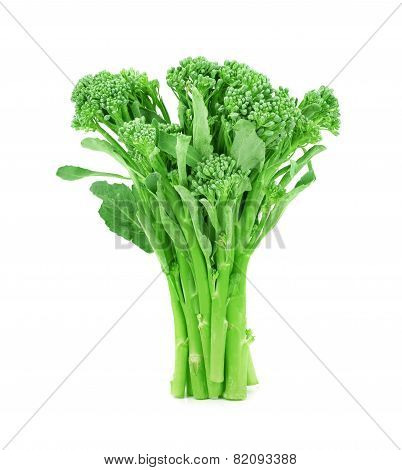 Baby Broccoli Isolated On White Background