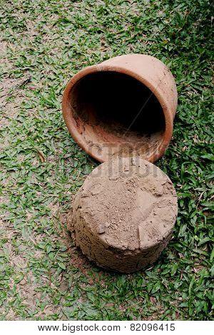 Soil Drop From Pot