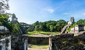 picture of mayan  - Panoramic view of Mayan historic building at Tikal Jungle - JPG