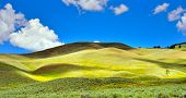 foto of lamar  - Lamar Valley in Yellowstone National Park Wyoming in summer - JPG