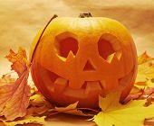 picture of jack-o-lantern  - Pumpkin Jack - JPG