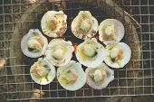 stock photo of flame-grilled  - Grilled fresh scallops with butter and herb on flaming grill - JPG