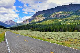 foto of lamar  - Road through the Lamar Valley in Yellowstone National Park Wyoming in summer - JPG