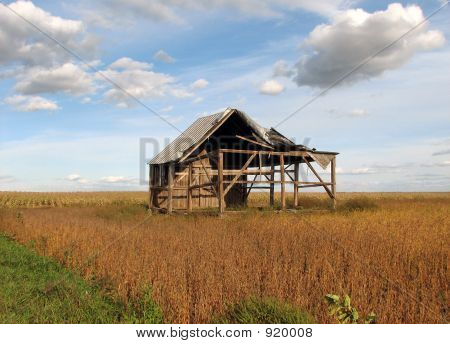 Old Abandoned House In The Soybean Field