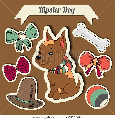 Vector Hipster Chihuahua Dog With A Dog With A Set Of Toys: Ball, Bows, Bone , Hat. Hand Drawn Color