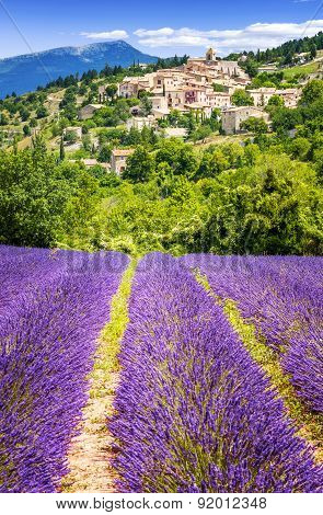 Lavender Field And Village, France.