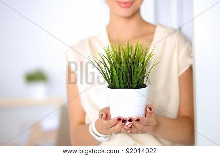 Beautiful woman holding pot with a plant .