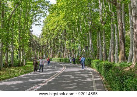 Tehran park Zafaranieh