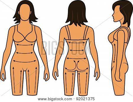 Woman mannequin slimming underwear torso