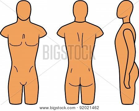 Male mannequin outlined torso