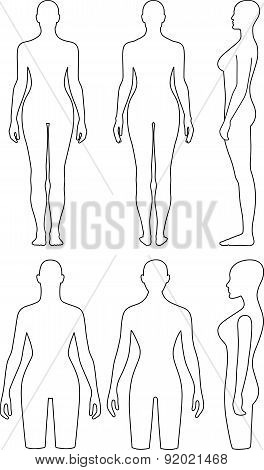 Woman mannequin outlined torso