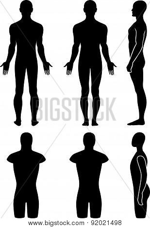 Male mannequin outlined silhouette torso