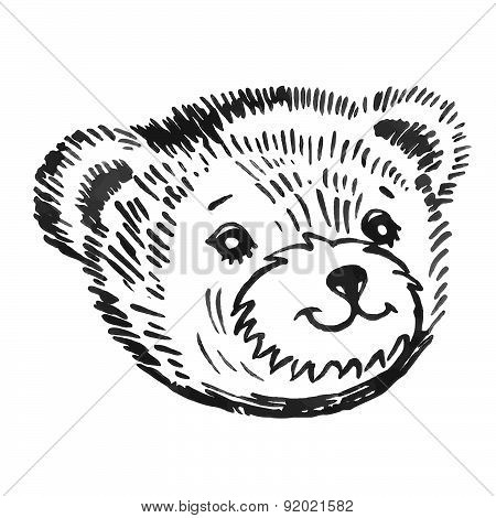Bear's smiling snout pattern