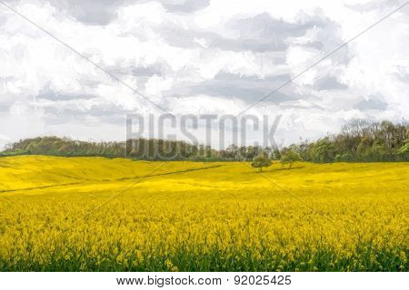 Two Trees In A Rapeseed Field