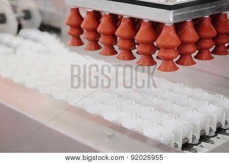 Machine for the egg package
