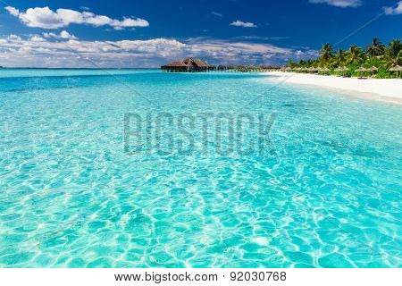 Tropical beach in Maldives with coconut palm trees and white sand