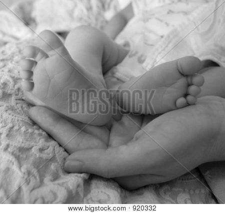 Tiny Toes B&W