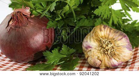 Onion Garlic And Parsley On A Check Cloth