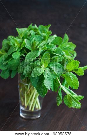Fresh Mint Leaves On A Wooden Background