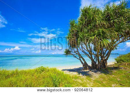 Beautiful Sea And Coastline