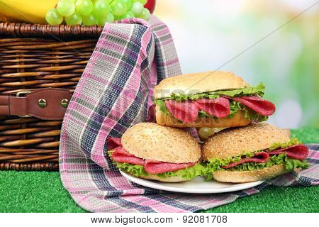 Tasty sandwiches near wicker picnic basket on green grass on blue background