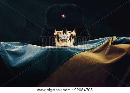 Skull With Russian Ushanka On The Ukraine Flag