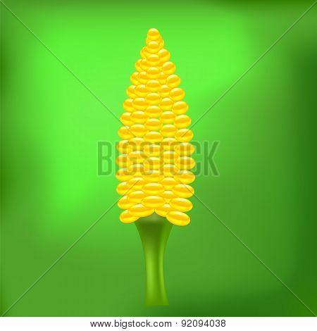 Cob Corn