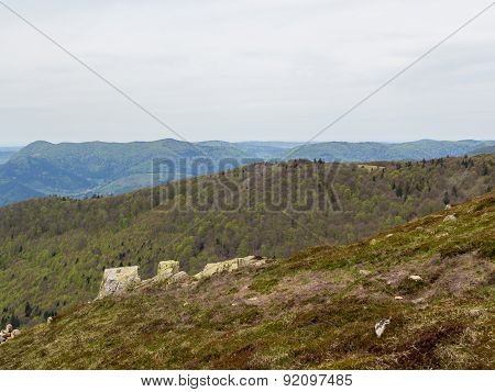 Vosges Hills Covered With Trees