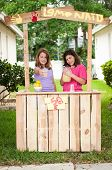 picture of pitcher  - Two young girls selling lemonade - JPG