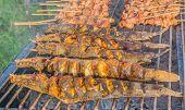 foto of catfish  - image of Walking catfish on grill Thailand - JPG
