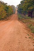 stock photo of dirt road  - a red dirt road in rural arkansas usa - JPG