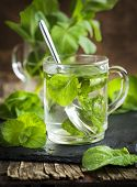 stock photo of mint leaf  - Mint Tea in glass cup and fresh mint leaves - JPG