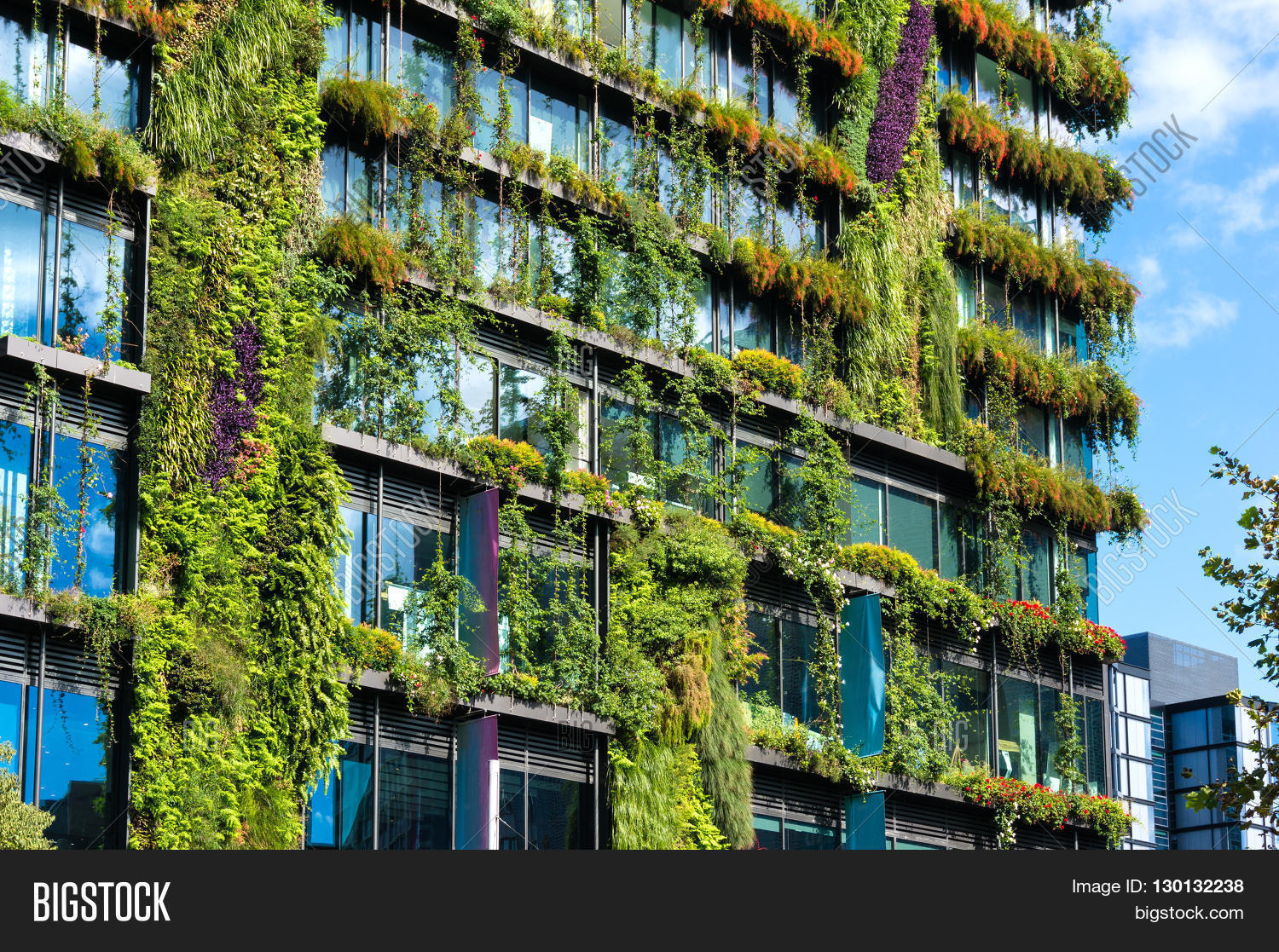 co architecture. Green skyscraper with hydroponic plants on the ... - ^