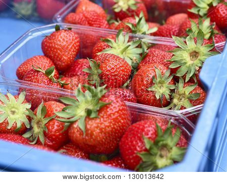 Fruit market with fresh fruits. Fresh strawberries at a market stall. Colorful strawberries in a row with copy space.