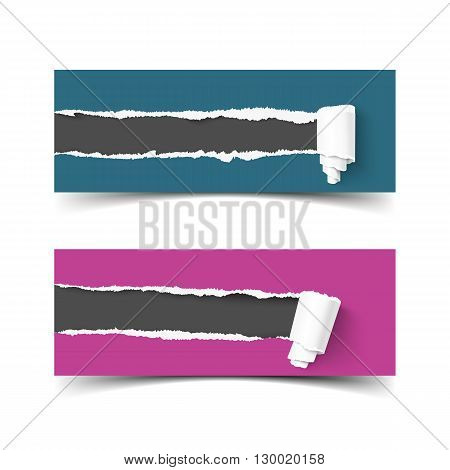 Set of vector banners torn paper with paper roll and ripped edges. Hole in paper, ripped edges. Torn paper frame for for scrapbooking. Web banner for promotion and advertising. Torn paper with ripped edges and paper rolls
