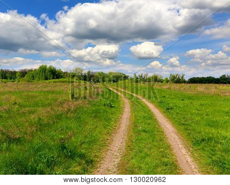 path across green meadow under nice clouds in sky