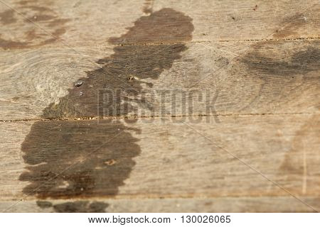 Wet footstep on old brown wooden pathway. Conceptual