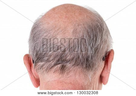 Back of the bald head of old man. Back view. Isolated on a white background.