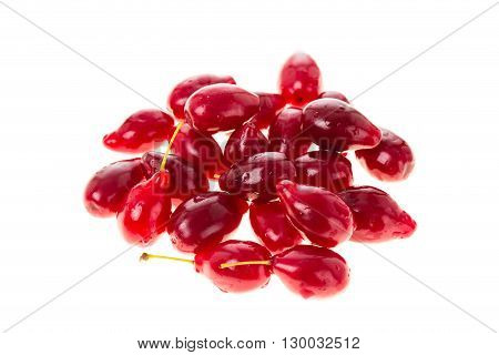 Ripe red dogwood berries. Isolated on a white background.