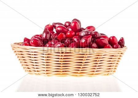 Wicker basket with red ripe dogwood berries. Isolated on a white background.