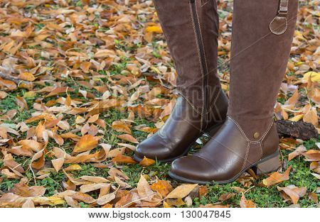 Pair of female brown kneehigh boots on autumn leaves