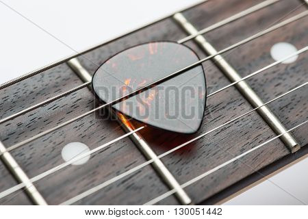 Electric guitar frets with strings and mediator