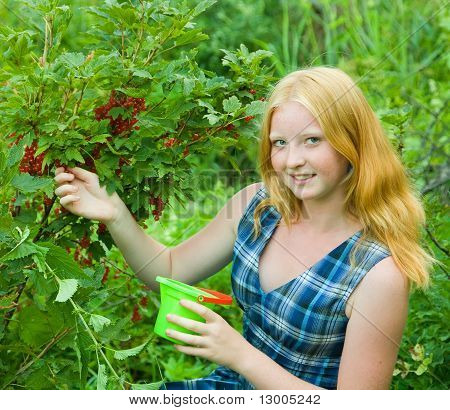 Teen Girl  Currant In The Field