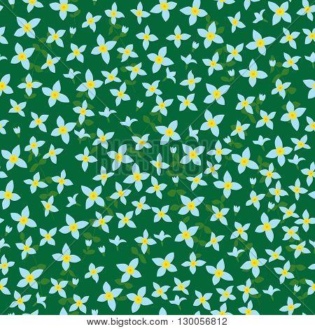 Bluet Seamless Pattern