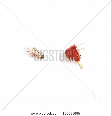 Small bulb with nest over isolated white background