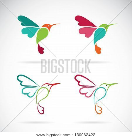 Vector image of an hummingbird design on white background Logo Symbol