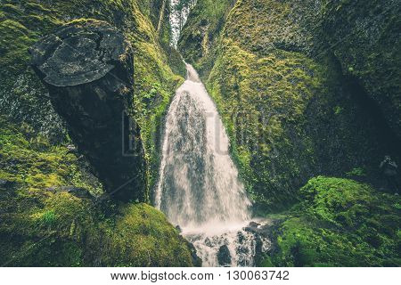 Scenic Oregon Mossy Waterfall Near Portland Oregon USA