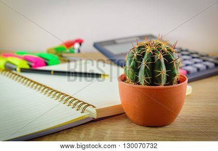 Beautiful cactus and blurred mix of office supplies on wooden table. Selective focus