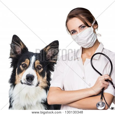 Female vet with a beautiful dog - isolated over a white background