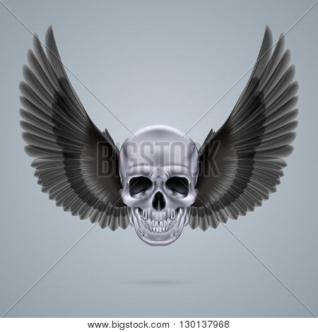 Metal chrome skull with two black crow wings.